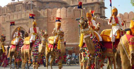 Bikaner Camel Festival of Bikaner